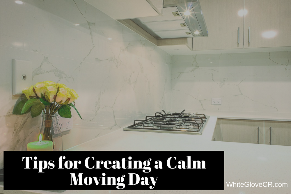 Tips for Creating a Calm Moving Day