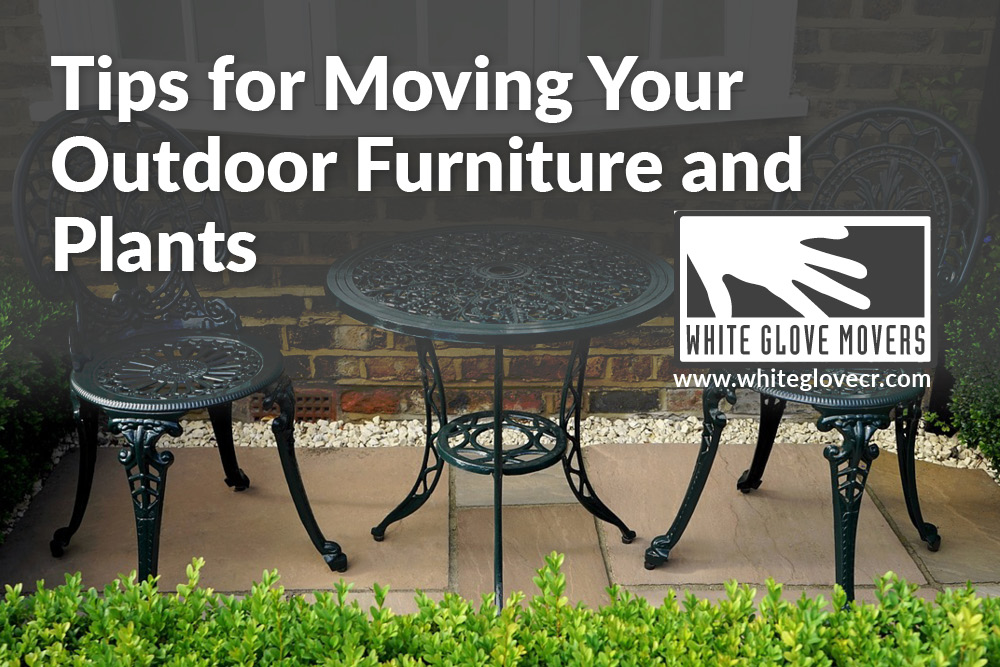 Tips for Moving Your Outdoor Furniture and Plants