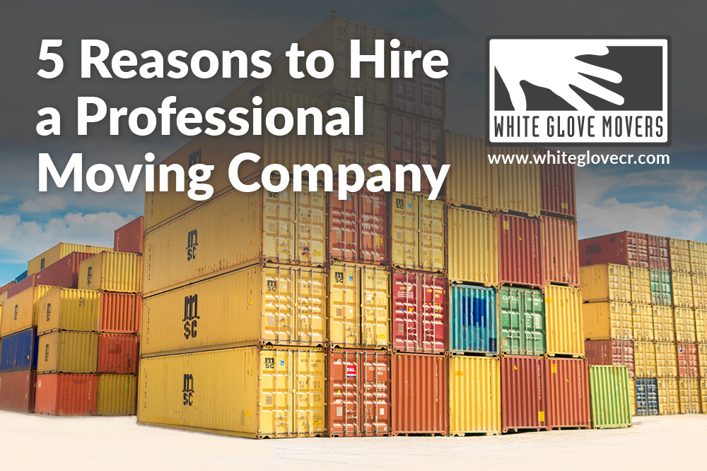 5 Reasons to Hire a Professional Moving Company