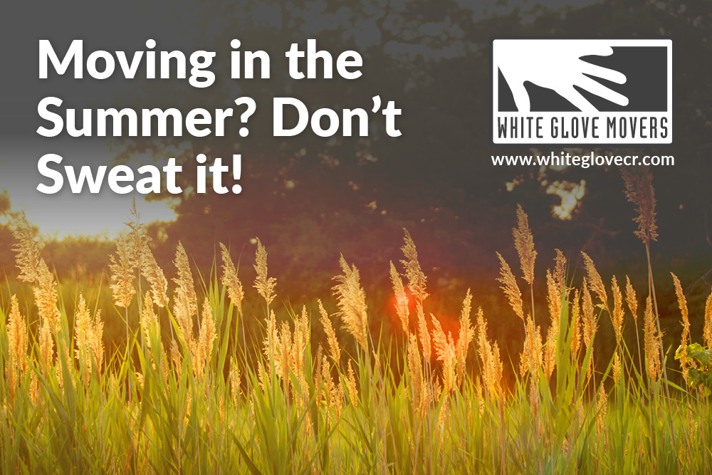 Moving in the Summer? Don't Sweat it!