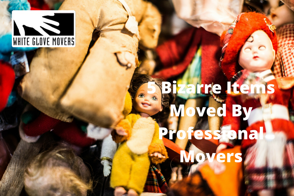 5 Bizarre Items Moved By Professional Movers