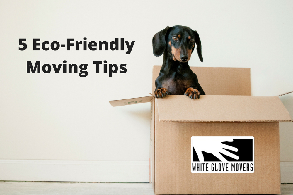 5 Eco-Friendly Moving Tips