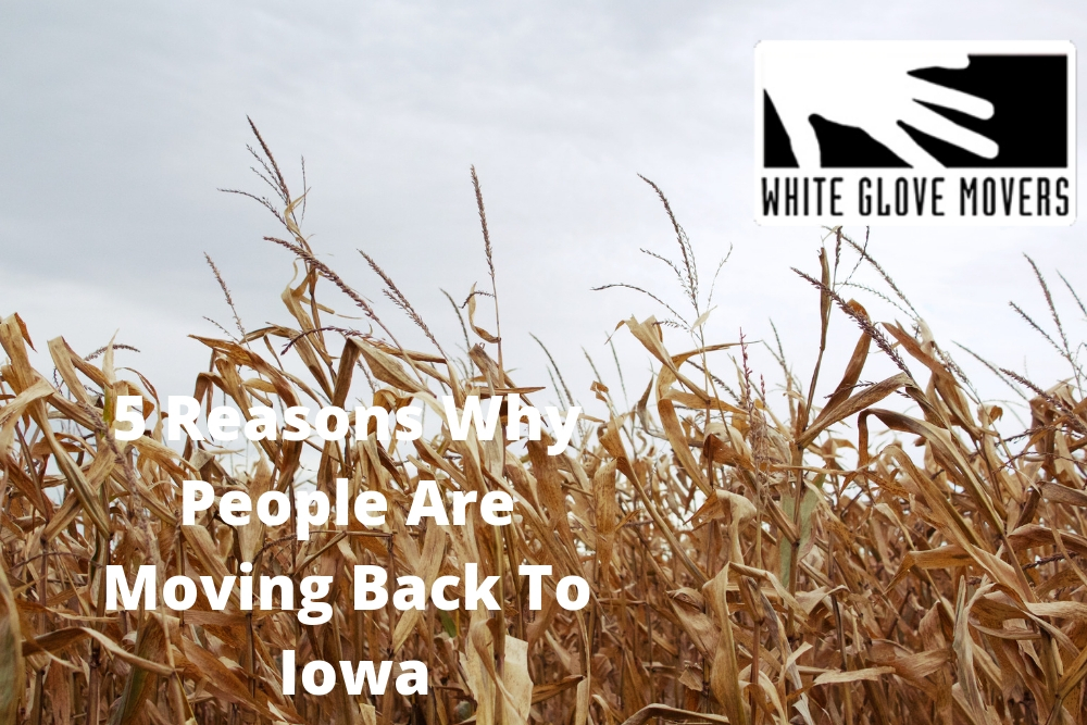 5 Reasons Why People Are Moving Back To Iowa