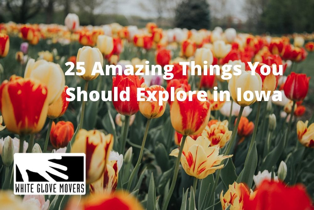 25 Amazing Things You Should Explore in Iowa (Part 1 of 3)